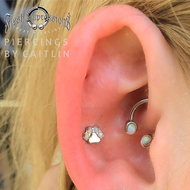 Caitlin from @fleshimpressions in Broadbeach Queensland AU posted this picture of an I.S. Titanium Faux-pal Cabochon Gem Paw Print Threaded End that she installed atop a post in an outer Conch piercing that she did on one of her customers there. The White faux-pal cabochons in the paw matches nicely with the 2x White-set I.S. Titanium 3 Prong-set Faux-pal Ball Threaded Ends that are screwed into the Circular Barbell in the Daith piercing... that Kyla from @sacredartbodypiercing in Newcastle…
