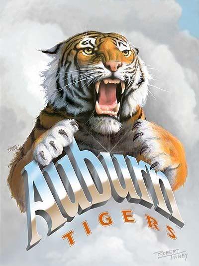 Auburn Tigers Image