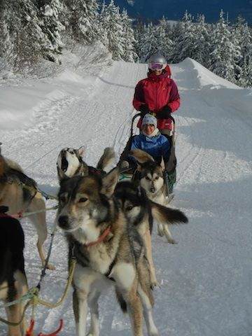 Dog sledding at Big White, BC Canada...what you can expect!