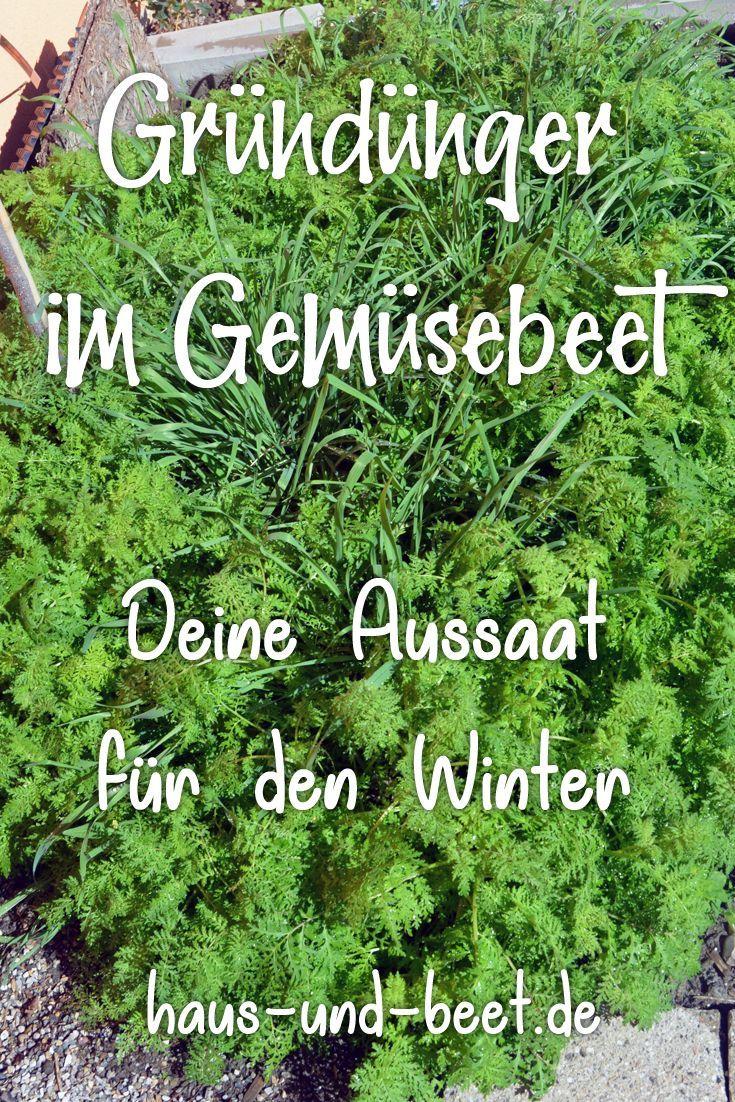 Grundungung Was Ist Das Was Soll Das Gartenarbeit In 2020 Herb Garden Pallet Planting Vegetables Herb Garden Design