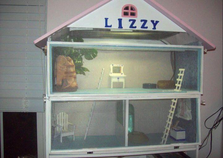 DIY Dollhouse Lizard Cage - petdiys.com   Bearded Dragon's ...