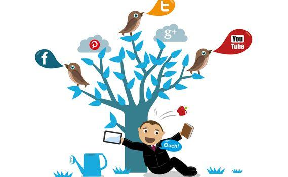 Никогда не сдаваться  Человеку, который начинает заниматься SMM, нужно выработать навык не сдаваться: плохих результатов в нашей работе не бывает. Есть только первая фаза альфа-бета-тестирования, и при неудаче необходимо просто пробовать другой инструмент, картинку, текст, параметр настройки.  #SeoSolution #seo #smm #соцсети #совет #интернет #харьков #украина #маркетинг #продвижение #советы #оптимизация #бизнес #вк #fb #мотивация