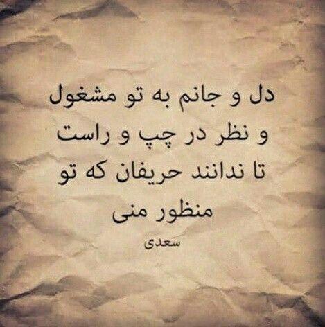 جناب سعدی