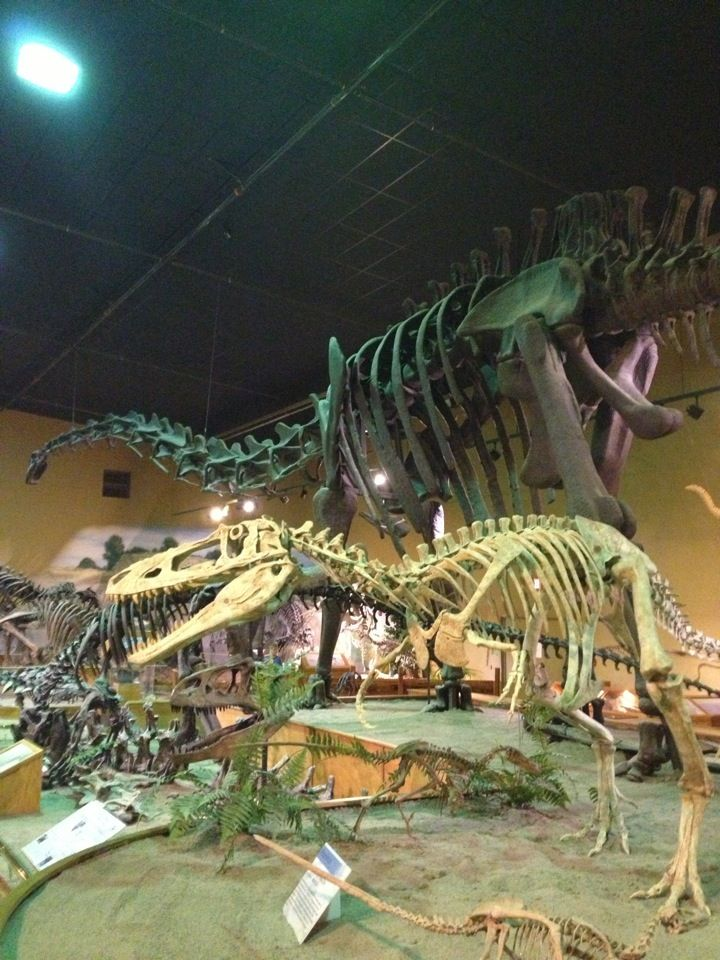 The Wyoming Dinosaur Center in Thermopolis, WY