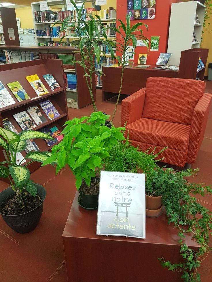Section zen. Bibliothèque . Library display.