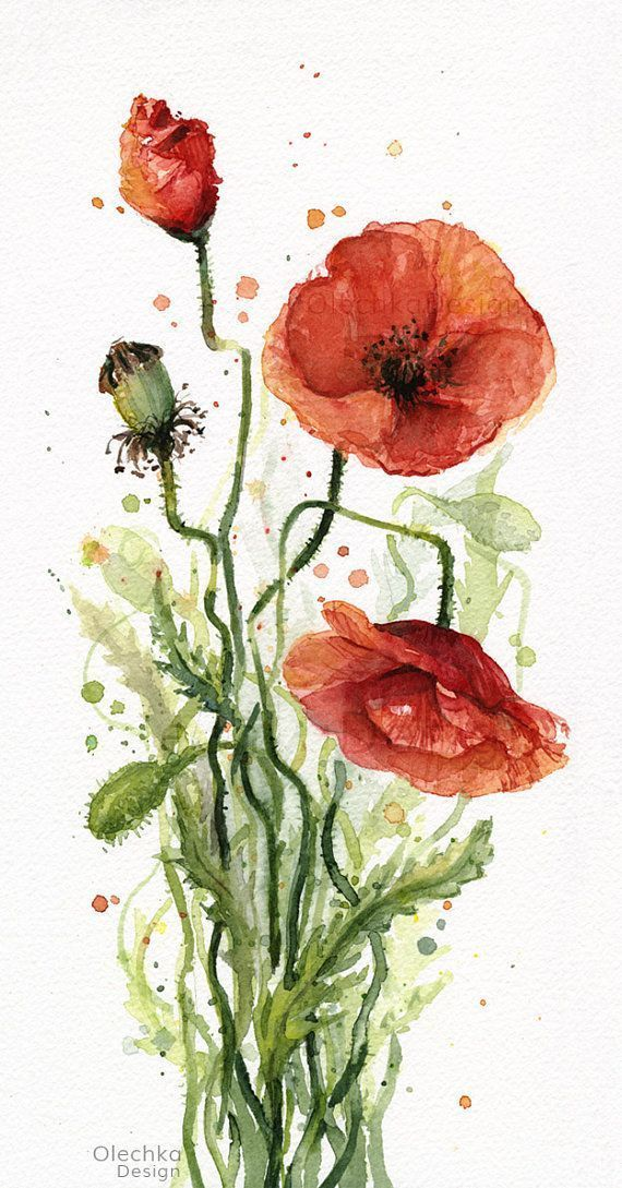 Poppies Watercolor Art Prints Red Poppy Art Prints Poppy Wall