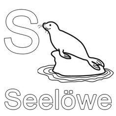 Buchstaben lernen: Kostenlose Malvorlage: S wie Seelöwe zum Ausmalen