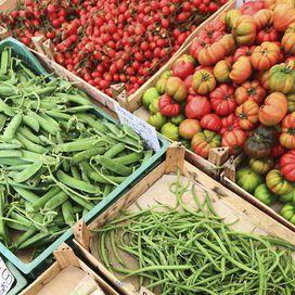 Il+martedì+della+dieta+Dukan+dei+7+giorniÉ+il+giorno+in+cui,+oltre+alle+proteine+magre+del+lunedì,+si+possono+mangiare+le+verdure. Ortaggi+permessiPomodori,+cetrioli,+ravanelli,+spinaci,+asparagi,+