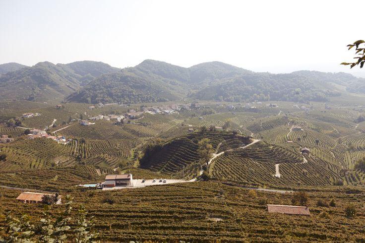 Cesare De Stefani – Owner of L'Osteria Senz'Oste in Valdobbiadene, Italy « the selby