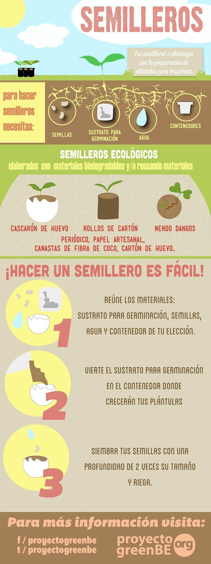 Aprende a hacer un semillero o almácigo #accionesverdes #estudiantes #umayor
