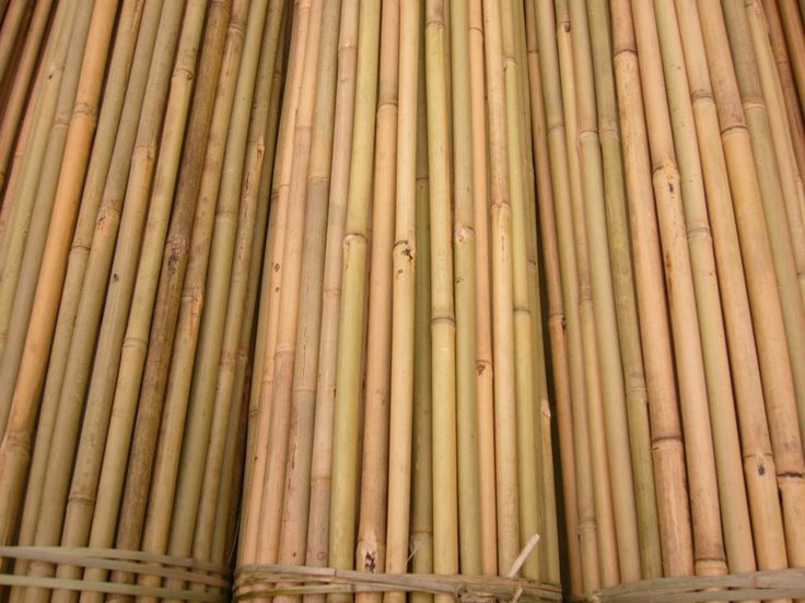 Natural Tonkin and Moso bamboo poles and bamboo sticks are commercial grade with uncompromising quality. These bamboo poles and bamboo sticks can be used as a decorative element for indoor and outdoor projects by adding a calming, natural presence to your Zen space.