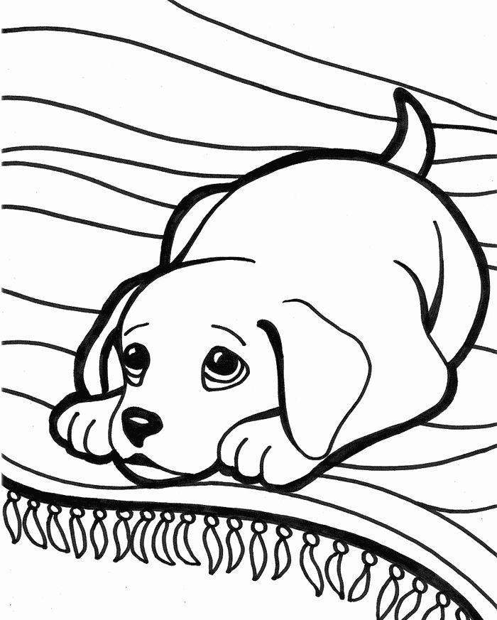 Cute Dog Coloring Page Elegant Cute Puppies Free Coloring Pages Malvorlagen Tiere Ausmalbilder Hunde Ausmalbilder Katzen