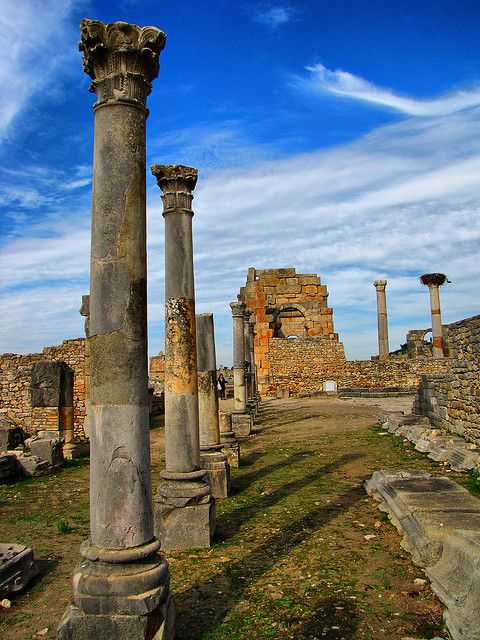 Volubilis, Morocco - Roman Ruins