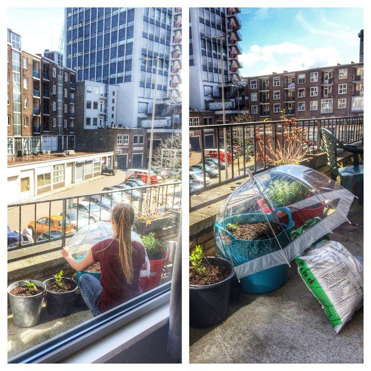 17 geselecteerde idee n over balkontuin door deboonindetuin appartement balkon balkon - Outdoor tuin decoratie ideeen ...