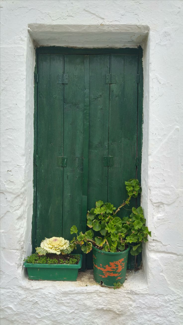 A green decoration for the green window