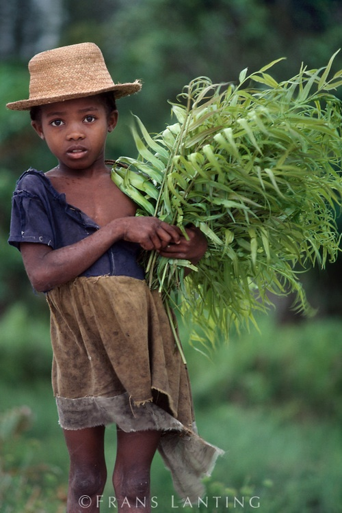 by Frans Lanting. Protect all children from abuse. repinned: www.brindacarey.com