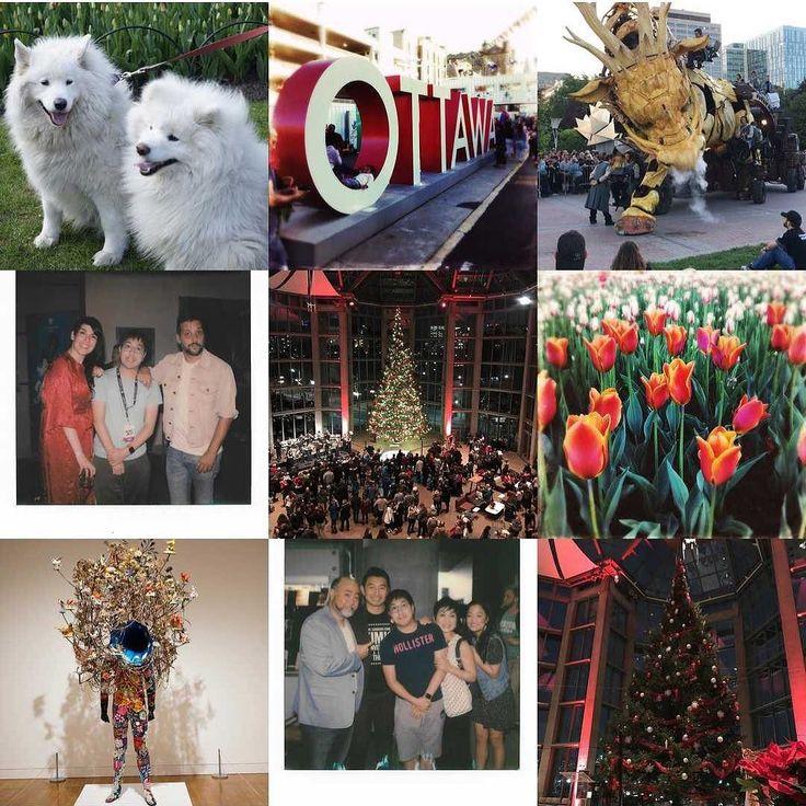 Heres top 9 photos of 2017. . . . . . #2017bestnine #2017 #happynewyear #instagood #bestnine2017 #bestnine #newyearseve #instagram #instapic #friends #instalike #goodbye2017 #photography #bestof2017 #instadaily #2017bestnineinstagram #nature #nye #dogsofinstagram #doglove #strombo #kimsconvenience #polaroidoriginals #polaroid #ottawa #myottawa