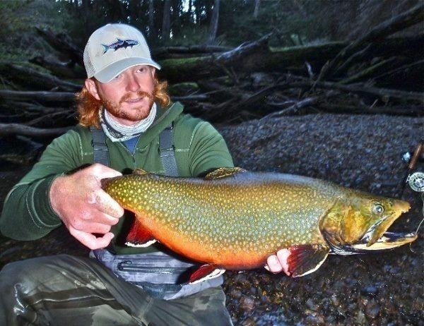 17 best images about brook trout on pinterest virginia for Trout fishing va