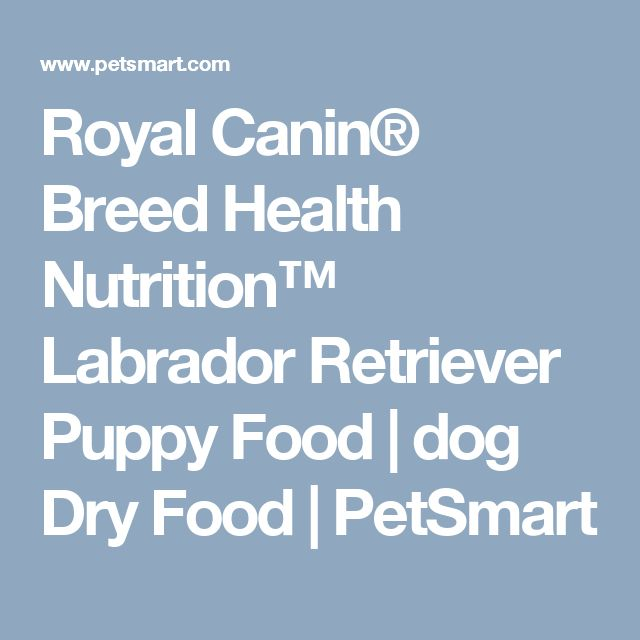 Royal Canin® Breed Health Nutrition™ Labrador Retriever Puppy Food | dog Dry Food | PetSmart