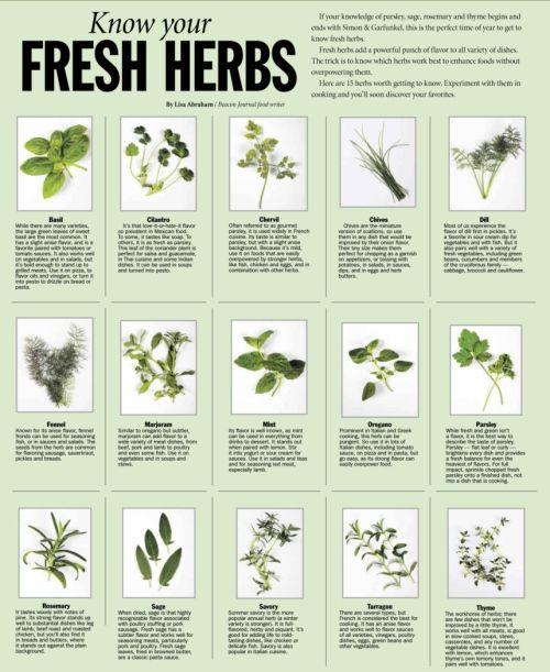 Woman's Healing Herbs Chart - Liz Cook Charts |Herbs Chart