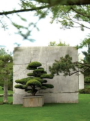 Tree Museum | Landscape Architect Enzo Eneas | Lake Zurich, Switzerland