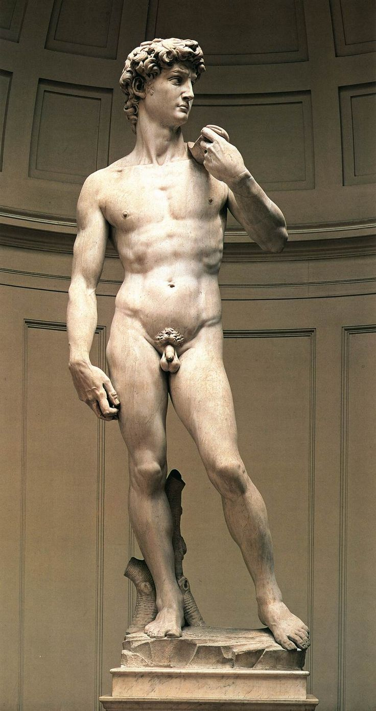 In 1501 Michelangelo was commissioned to create the David by the Arte della Lana (Guild of Wool Merchant),.