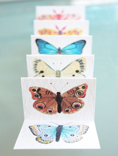 love the butterfly colouring