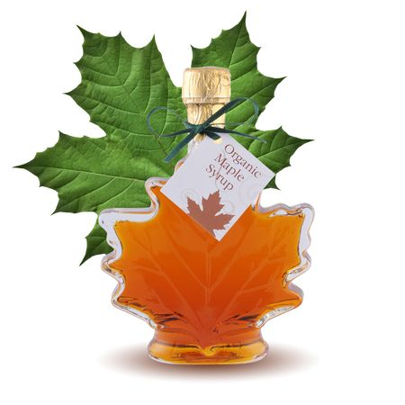 Substitute 100% pure Organic Maple Syrup for sugar in recipes by using 3/4 Cup per 1 Cup sugar. DECREASE baking temp 25 degrees!