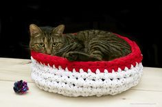 Tutorial: Super Bulky Crocheted Cat Bed - Okay, so this is a cat bed and I have no cat...but I'm thinking my dog would like it too.  :-)  It looks like it would be easy to adapt to any size needed.