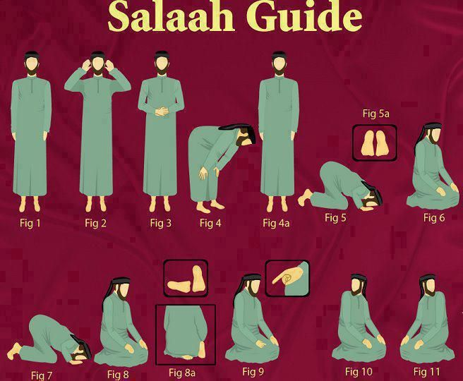 Obligatory Acts of Wudu/Ablution and Islamic/Muslims Namaz/Salah/Prayer for Praying To God (Allah). Muslim Prayers / Islamic Prayers, Wudu/Ablution Acts