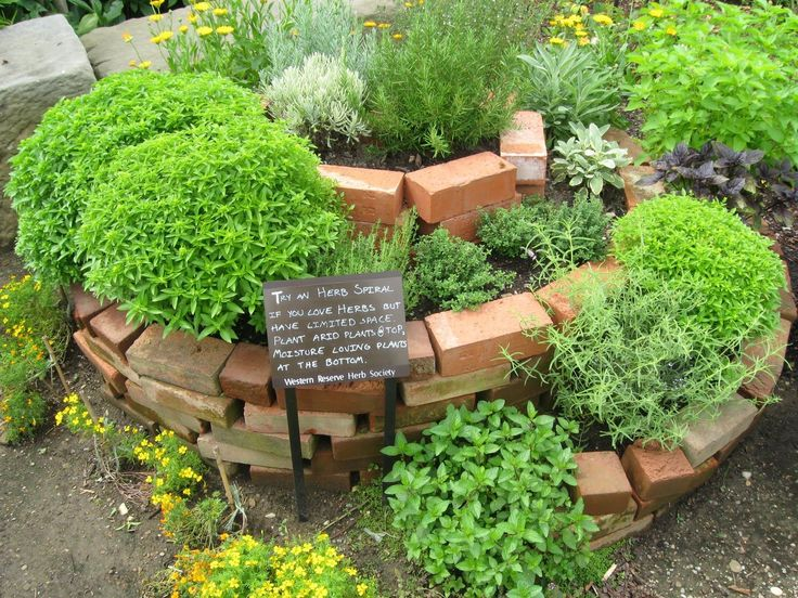 Best Herb Spiral Ideas On Pinterest Spiral Garden How To