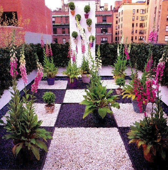 45 best images about madison cox on pinterest gardens for Jardin madison