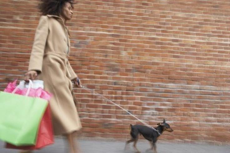 Shopping con il cane: per gli italiani è irrinunciabile http://www.petsparadise.it/cane/shopping-con-il-cane-per-gli-italiani-e-irrinunciabile/