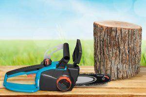 6 Best Budget Electric Chainsaw