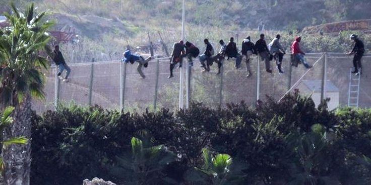 Immigrazione e Schengen: come i muri di cemento stanno dividendo lEuropa