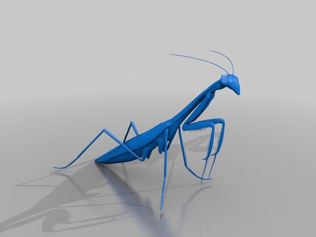 Preying Mantis by Mike1701 - Thingiverse