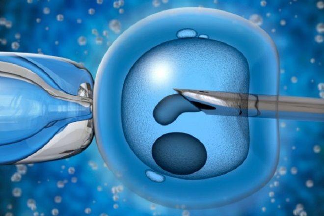 Scambio di embrioni al Pertini di Roma. Donna incinta di due gemelli non suoi