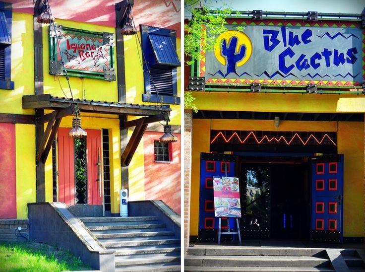 Wiosenne zmiany w restauracji Blue Cactus & Iguana Lounge