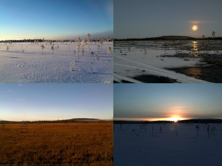 Want to own land and protect it? Want to follow the events and learn more about it? Want to see what is going on? With Geocollectors you can! These pictures taken with the live camera from the first #Geocollectors area in #Lapland.