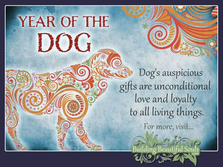 Chinese Zodiac Dog years are 1958, 1970, 1982, 1994, 2006, 2018, 2030. Get in-depth info on the Year of the Dog traits & personality!