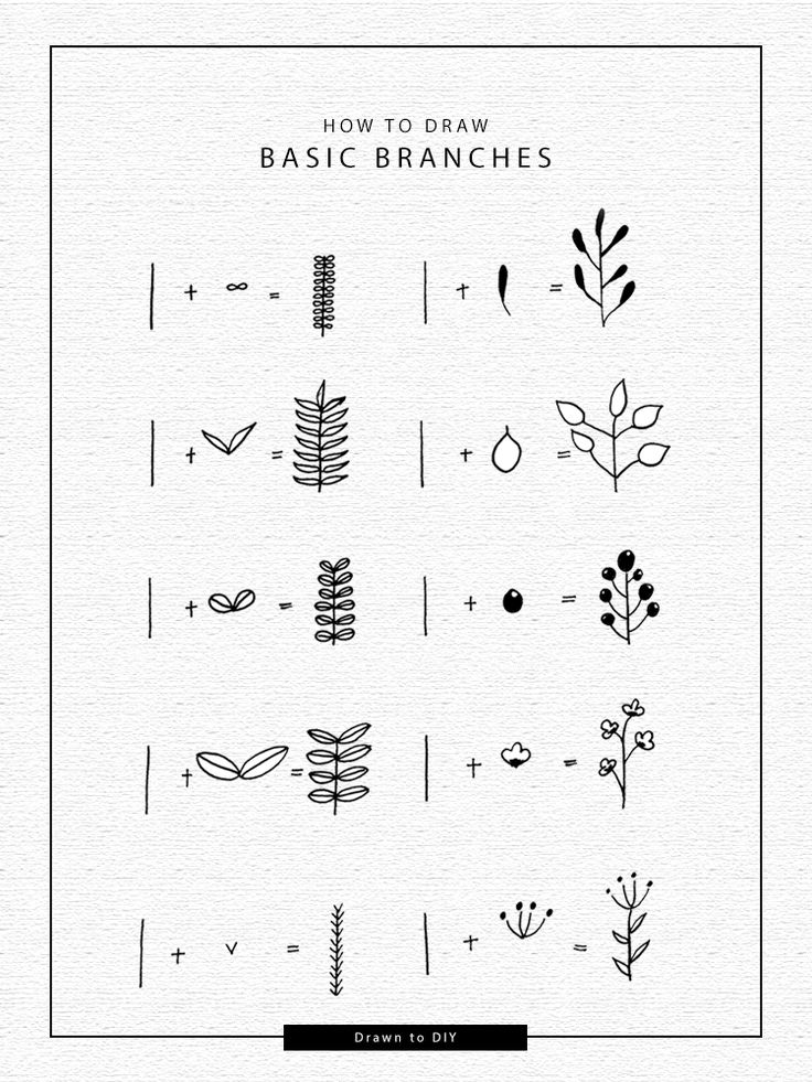 How to Draw Basic Branches and Wreaths @DrawntoDIY