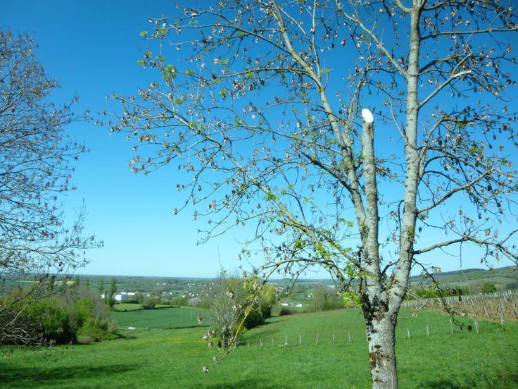 Arrivée dans la Bresse.