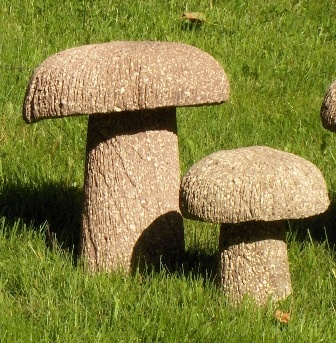 Mushrooms - Taken For Granite Art