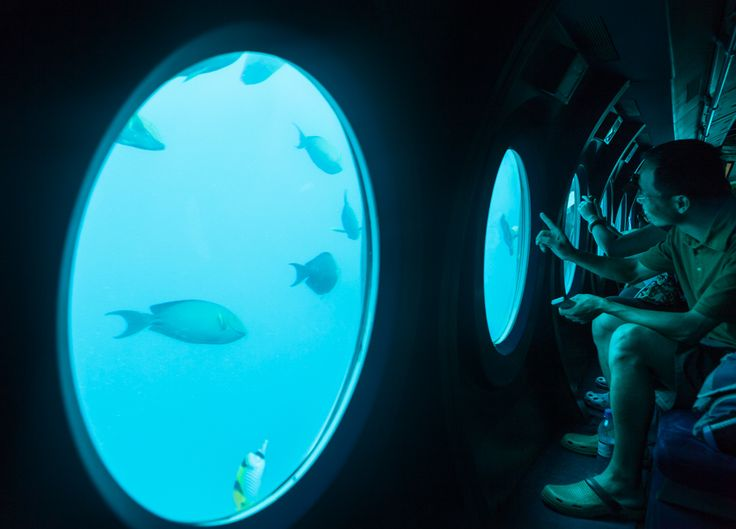 Look beyond the regular!  #vivantabytaj #vivanta #submarine #ocean #adventure #marinelife #CoralReef #Maldives