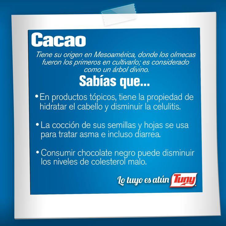 Descubre los beneficios del delicioso cacao. #SabíasQue #saludable
