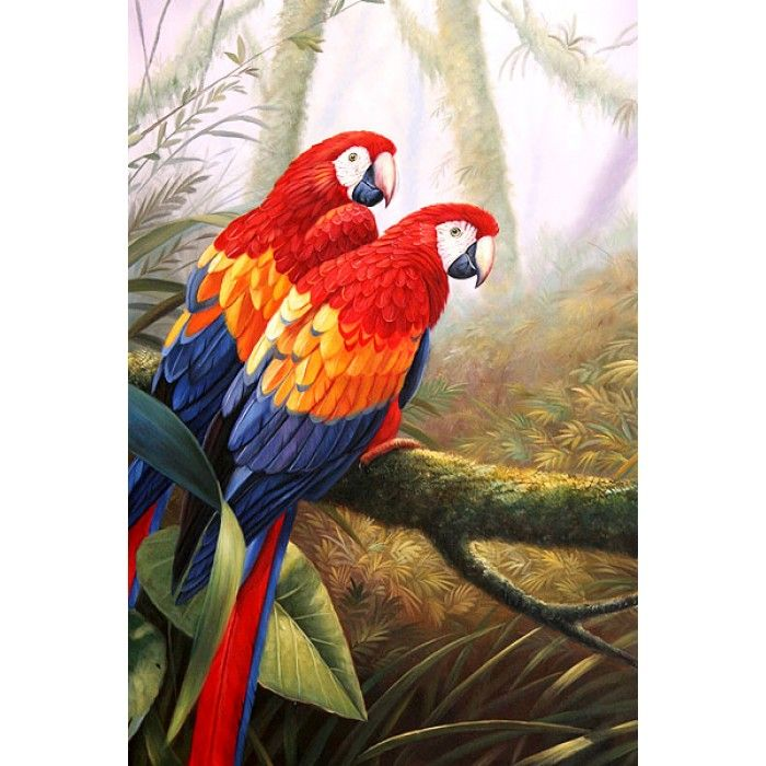 8 best images about parrots on pinterest oil on canvas for Cheap canvas paintings for sale