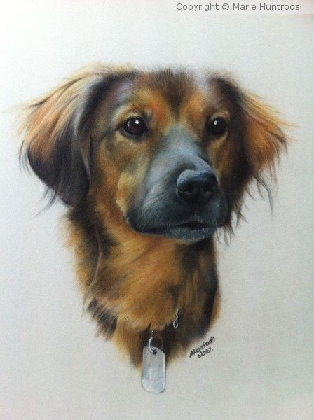 Pedro by Marie Huntrods on ARTwanted