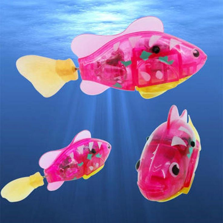 14 best awesome deals images on pinterest pet products for Swimming fish cat toy