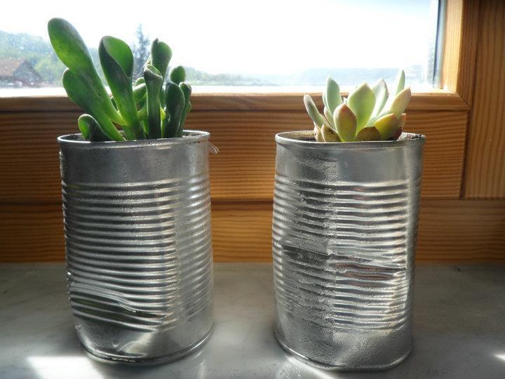Come riciclare lattine - vasetto per piante grasse (how to recycle cans - a plant pot)