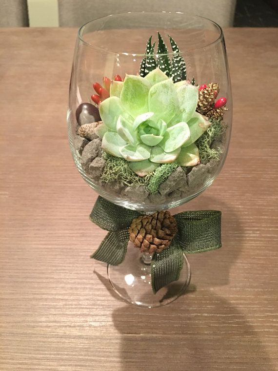 Potted Succulents Wine Glass Terrarium kit  Wine Making